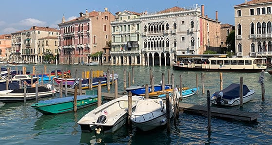 Taking a broader, ecological view of Venice