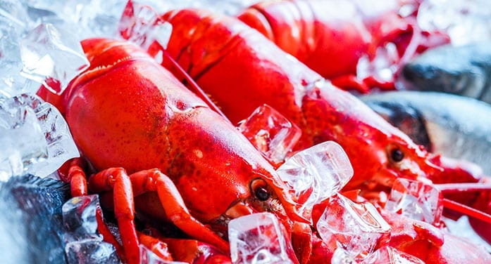 History shows a path to resolve lobster fisheries dispute