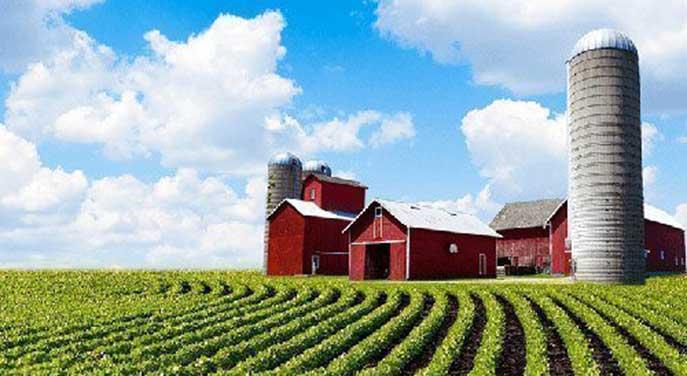 farm farming farmer